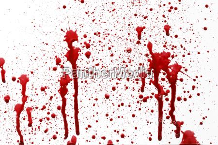 gota de sangue