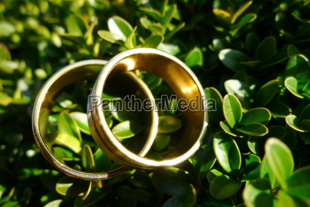 wedding rings the covenant for life