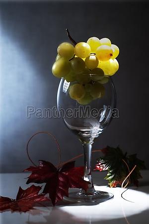 beber bebida vinho alcool vidro copo