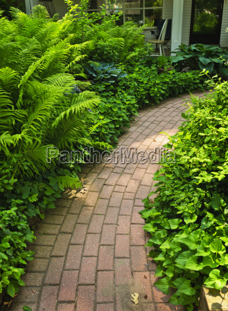 brick path in landscaped garden