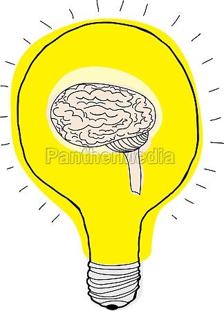 cerebro na lampada