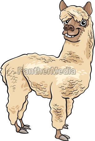 ilustracao animal de alpaca