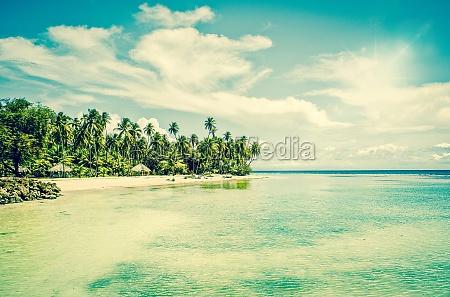 estancia de verao tropical no oceano
