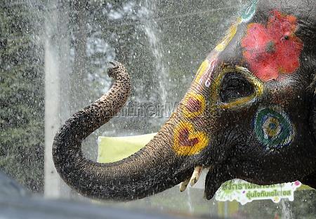 festival de songkran de tailandia