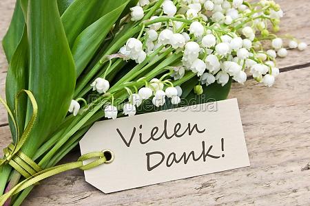 tabela folha flor planta madeira marrom