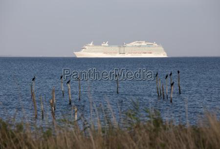 navio de cruzeiros no horizonte