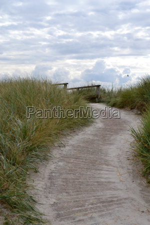 caminho atraves das dunas