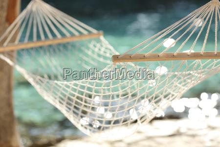 hammock em um conceito tropical das