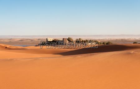 oasis no deserto de sahara marrocos