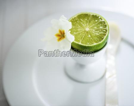 interior fruta exotico borroso fruta tropical
