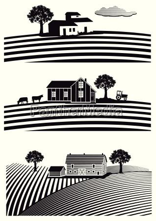 fazenda e campos