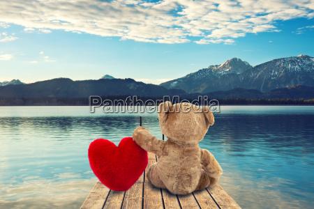 teddy am see