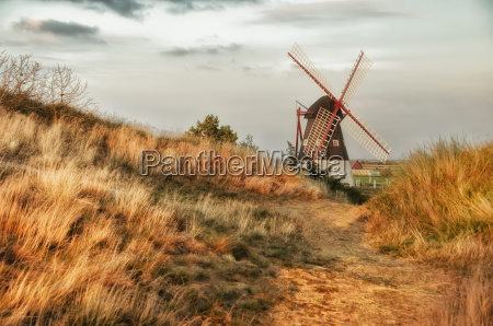 windmill behind sand dune with golden
