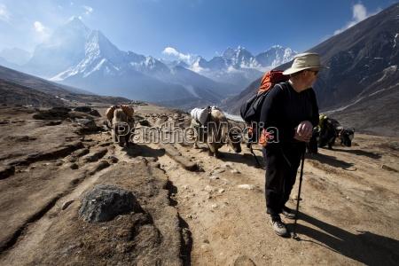 um trekker em nepal olha sobre