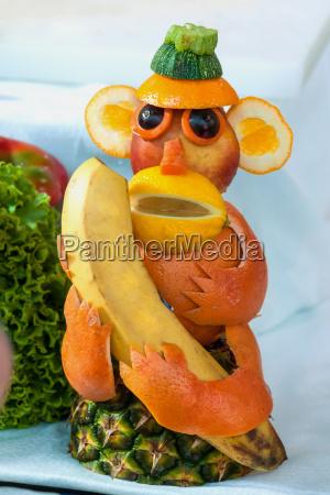 macaco fruta bufe formacao