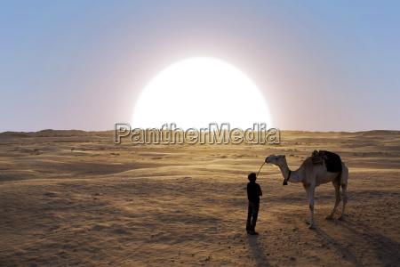 por do sol no deserto de