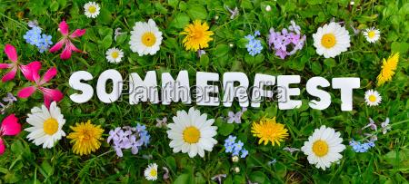 sommer fest tekst pa blomst eng