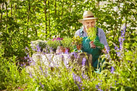 risadinha sorrisos relaxamento jardim flor planta