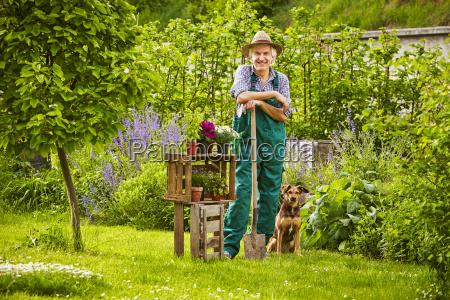garden dog hat standing gardener