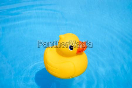 azul verao brinquedo pato esguicho plastico
