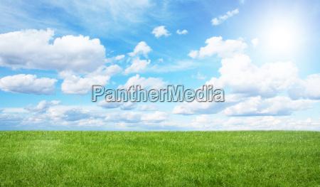 campo verde e ceu azul