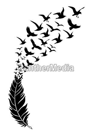 penas pretas com passaros voadores