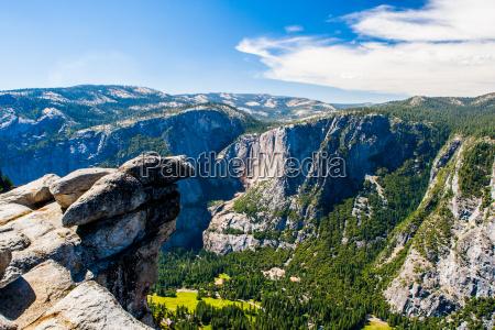 arvore arvores turismo eua california america