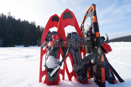 inverno raquetes de neve