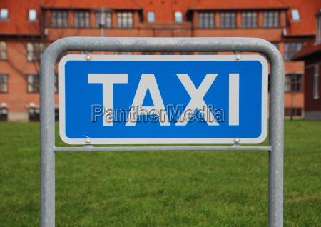 azul liberado closeup arvore verao taxi