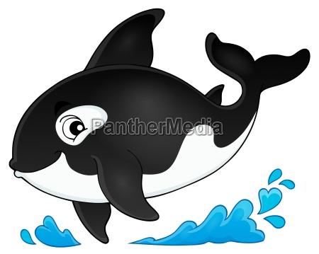 enorme animal mamifero grande nadadeira wals