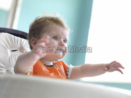 curiosidade bebe infantil tag de dia