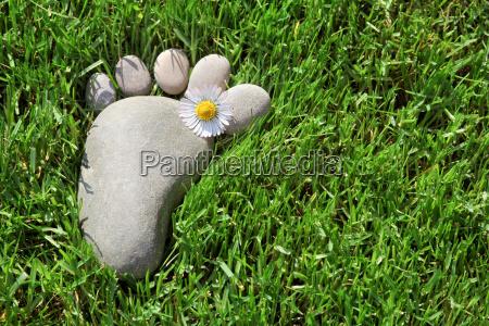 pegada na grama