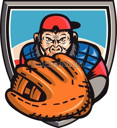 luva chimpanze jogador beisebol