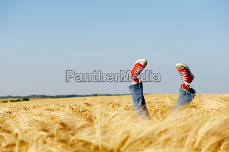 feet sticking out from a wheat