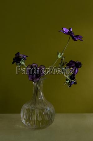 vase of flowers on table
