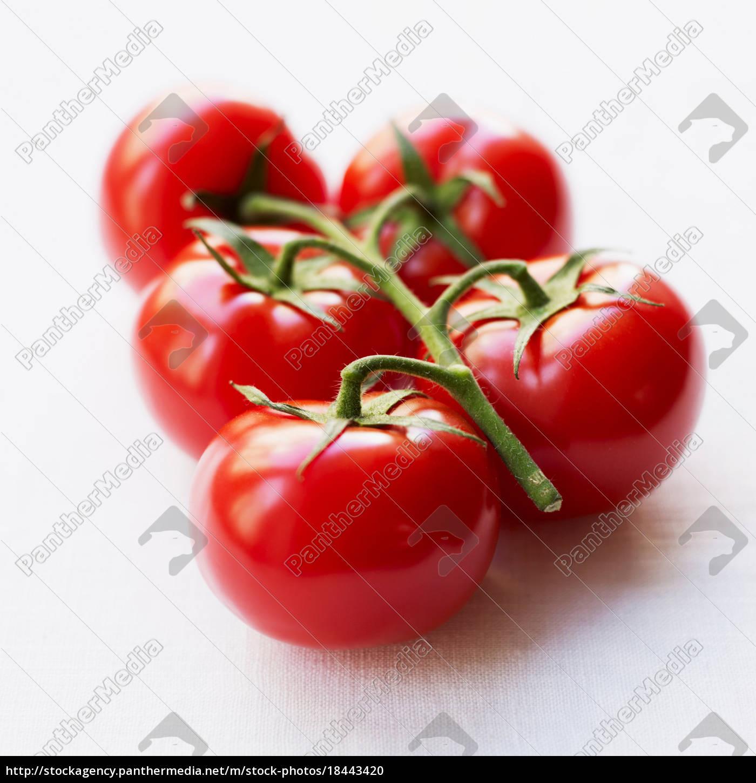 tomates, no, ramo - 18443420