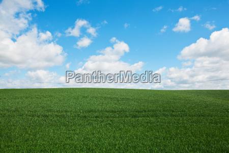 green field england uk