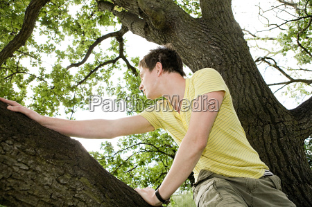 young man in a tree
