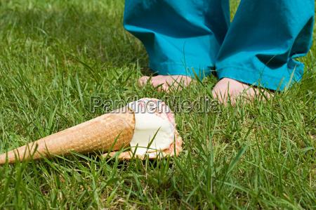 alimento jardim verao calcas pe ao