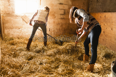 two young women making straw bed