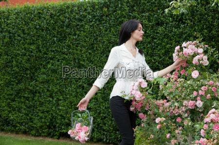 woman picking flowers in backyard