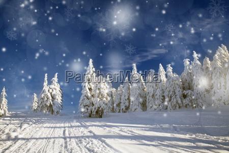 paisagem fantastica do inverno