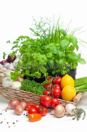 vegetal tomates ingredientes cebolas cogumelos ervas
