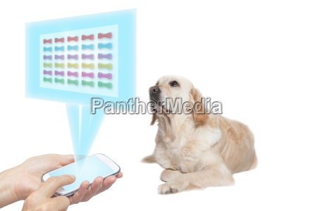 projeto animal tecnologia branco