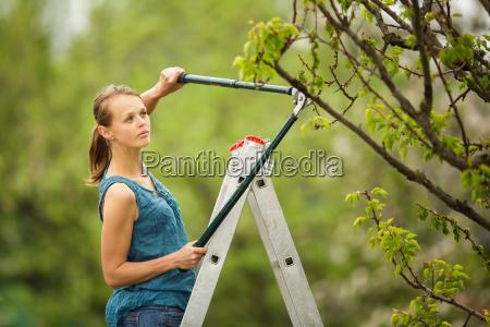 bonita jovem jardinagem em seu pomarjardim