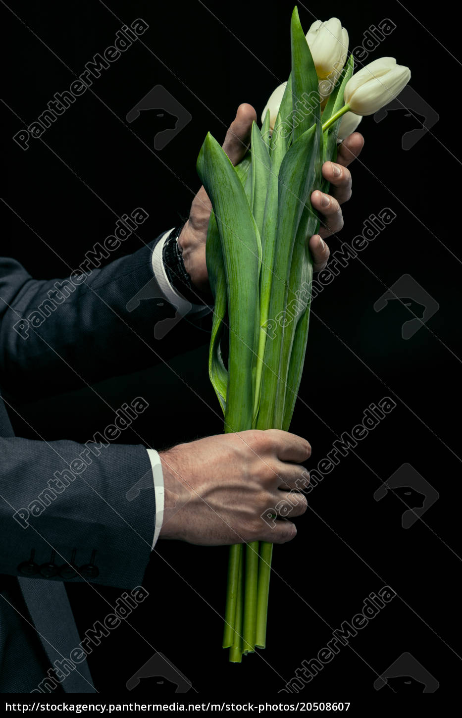 partial, view, of, man, holding, tulips - 20508607