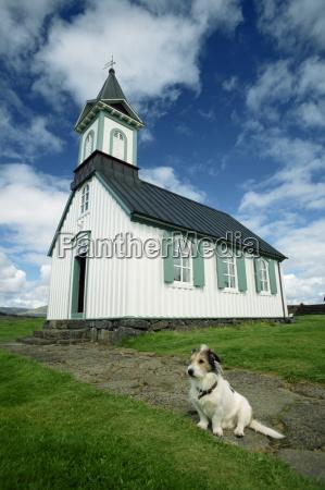 passeio viajar religioso igreja animal de