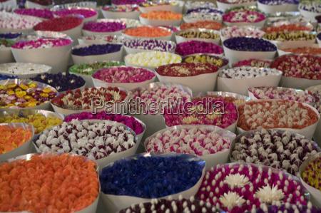flower market kunming yunnan china asia