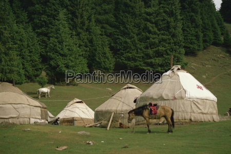 yurts and horses near lake tianche