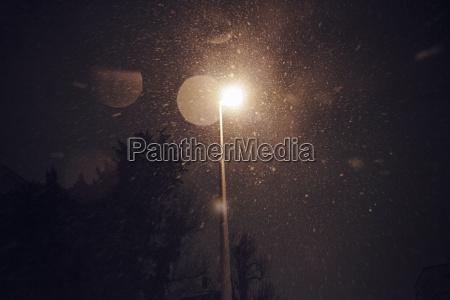 cor arvore inverno noite ceu noturno